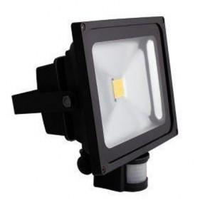 BG LDFLP30W-01 Guardian LED Floodlight with PIR 30 Watt
